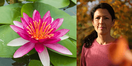 Oxford Insight Meditation Online Day Retreat with Jaya Rudgard tickets