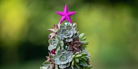 Succulent Christmas Tree Workshop tickets