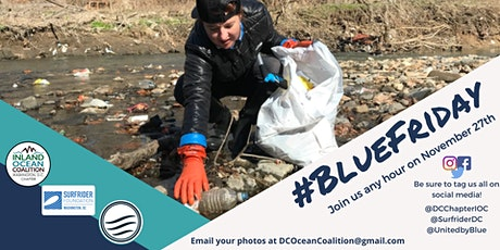 Blue Friday 2020 Virtual Clean-Up tickets
