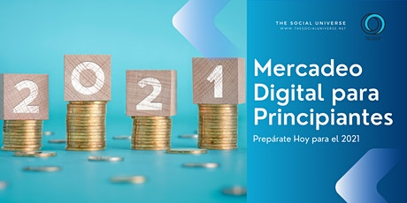 Mercadeo Digital para Principiantes entradas
