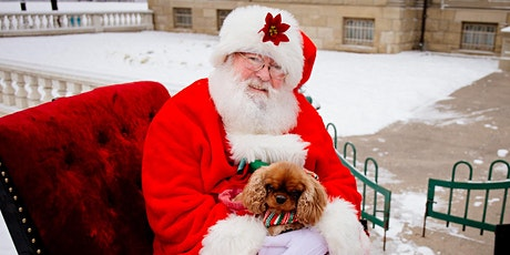 Outdoor Pet Portraits with Santa tickets