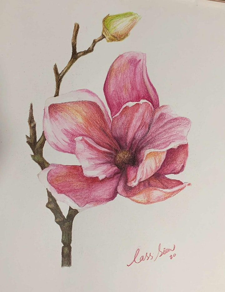 Botanical art (Watercolour pencil drawing and Painting class) image