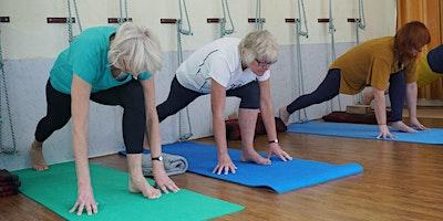 Yoga 101: Beginner Series for Every Body
