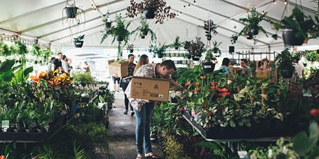 Melbourne - Virtual Indoor Plant Sale + Pick-ups are back! tickets