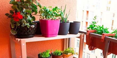 Online Balcony & Small Space Productive Gardening Workshop 06 February 2021 tickets