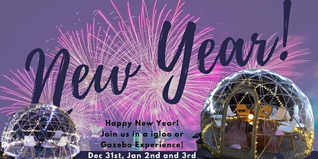 New Years Week Vine to Wine Igloo & Gazebo Experience Dec 31, Jan 1 & 2 tickets