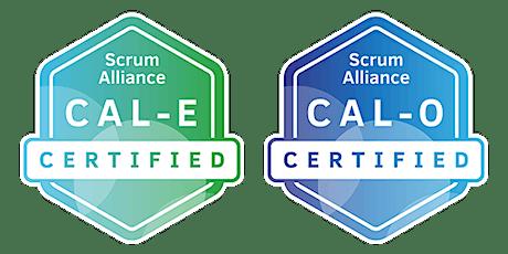 """""""Agile"""" Culture & Leadership (CAL-E & CAL-O) With Michael Sahota tickets"""