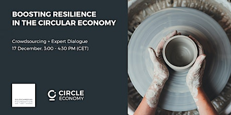 Boosting resilience in the circular economy: Crowdsourcing and Dialogue tickets