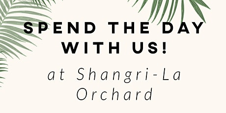 1-Day Yoga Retreat at Shangri-La with Yoga+ tickets