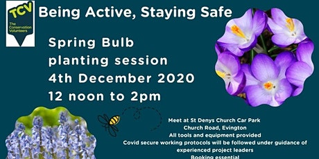 Being Active Staying Safe Spring Bulb Planting tickets