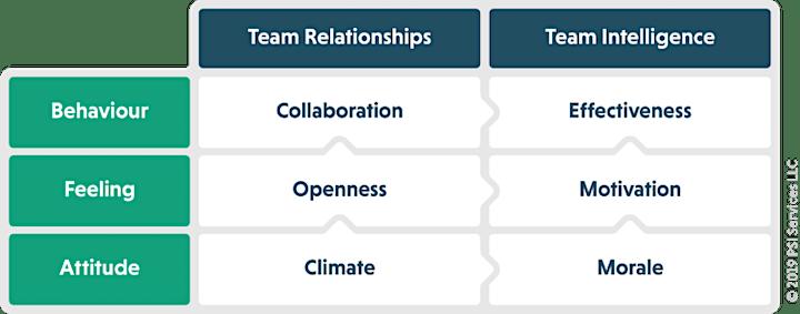 Team Emotional Intelligence Profile Accreditation image