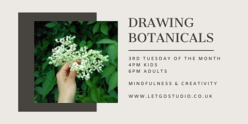 Drawing Botanicals for Kids