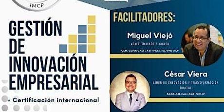 Curso Online Gestión de Innovación + certificación Internacional entradas
