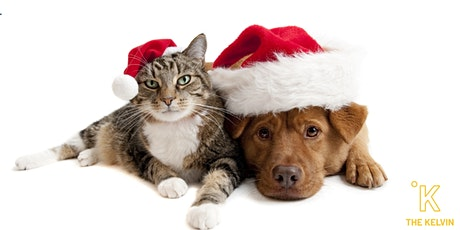 Holiday Pet Photos with The Kelvin tickets
