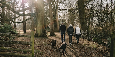 Nature Connect Walk - 2nd Monday of every month tickets