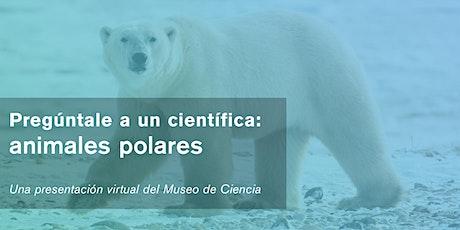 Pregúntale a una científica: animales polares