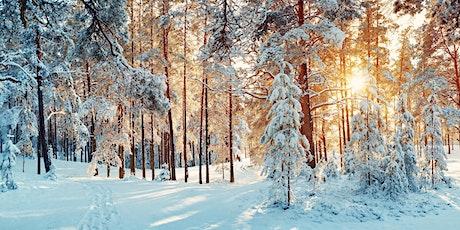 maandag 28 december   WinterverhaalDe sneeuwstorm tickets