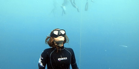 WELCOME  2021: Beginner Freedive Course tickets
