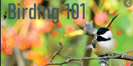 Birding 101 Virtual Workshop tickets