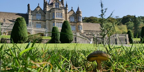 Timed entry to Tyntesfield (30 Nov - 6 Dec) tickets