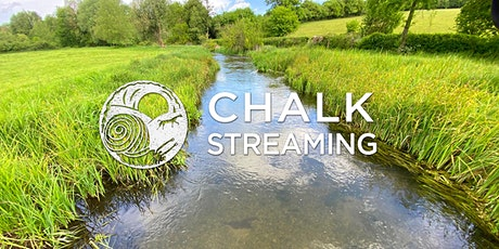 Nature Walk: Chalk Streaming tickets