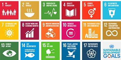 Chamber Low Carbon LIVE Lunch & Learn –  Delivering Sustainable Development