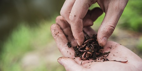 Vermiculture and Creating Your Own Worm Bin with Fleet Farming (Webinar) Tickets