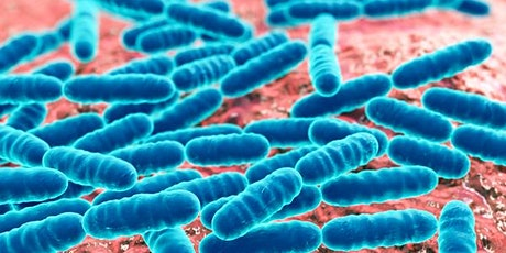 Thinking with Microbes - seminar #3 on infection, disease and finitude tickets