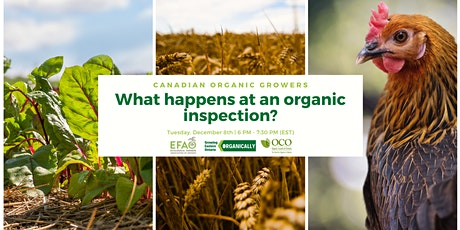 What Happens at an Organic Inspection and How to Be Prepared tickets