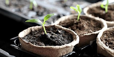 Horticulture 101 – Plantes d'intérieur et d'extérieur (FR - EN) tickets