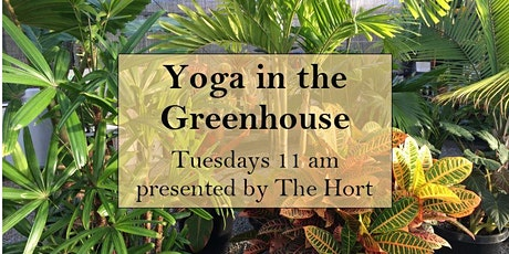Tuesday Morning Yoga in the Greenhouse tickets