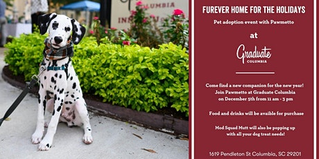Furever Home for the Holidays tickets