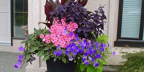 Planters and Hanging Baskets Webinars tickets