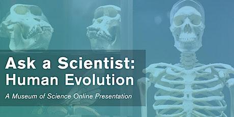 Ask a Scientist: Human Evolution - #Livestream