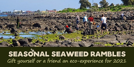 Seasonal Seaweed Rambles 2021 tickets