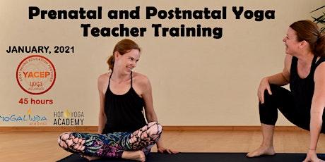 Prenatal and Postnatal Yoga Teacher Training tickets
