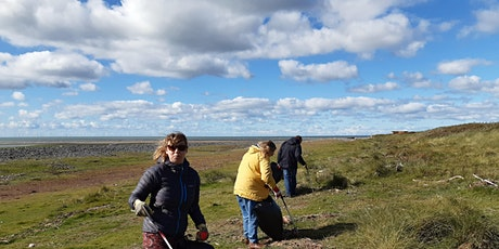 Dynamic Dunescapes Beach Clean at South Walney tickets