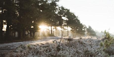 Nurturing Your Inner Light - Winter Solstice Yin + Meditation tickets