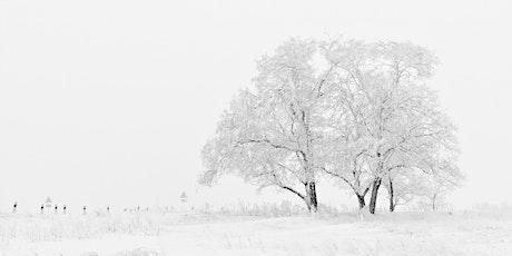 Winter Wonders tickets