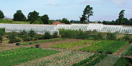 Restoring Audley End's Walled Kitchen Garden with Michael Thurlow tickets