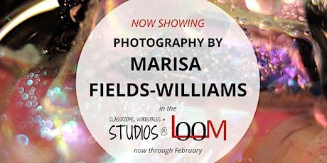 Marisa Fields-Williams – Fine Art Show tickets