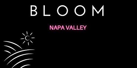 Napa Speed Dating tickets
