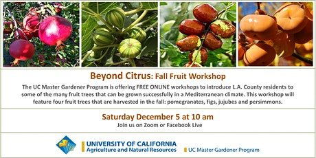 Beyond Citrus: Fruit Trees For a Fall Harvest tickets