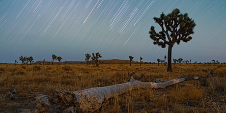 Astrophotography at Joshua Tree National Park: Capturing Orion & Star Trails with Stan Moniz tickets