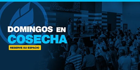 #DomingoEnCosecha | 11AM | 29 Noviembre 2020 boletos
