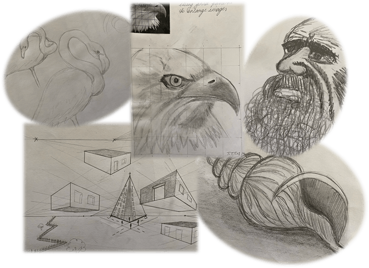 Learn to Draw for Beginners Short Course - Basic techniques tips and tricks image