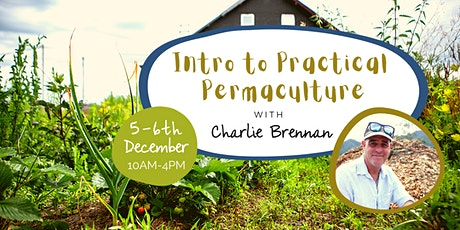 Intro to Practical Permaculture tickets