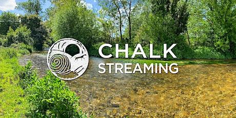 Nature Walk: Chalk Streaming tickets