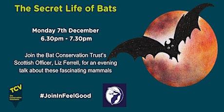 The Secret Life of Bats tickets