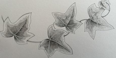 Webinar: Festive sketching workshop online tickets